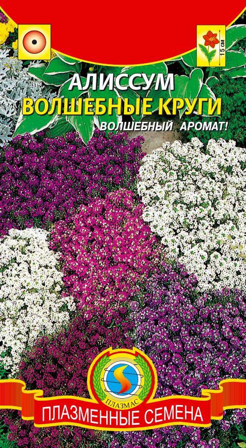 алиссум многолетний купить семена в екатеринбурге